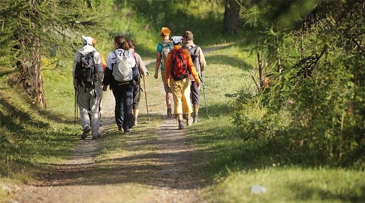 Trekking-esvos